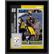 Darrius Heyward-Bey Pittsburgh Steelers Fanatics Authentic 10.5