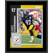 James Harrison Pittsburgh Steelers Fanatics Authentic 10.5
